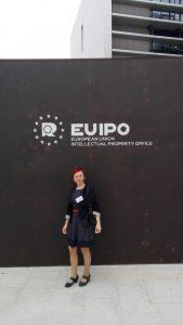 Europski zig